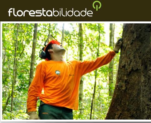 Florestabilidade: Educação para o Manejo Florestal